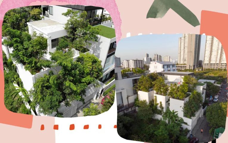 1 thiết kế cây xanh trong nhà ở đô thị đẹp